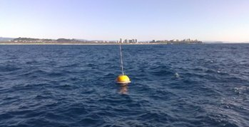 Tweed Wave Buoy